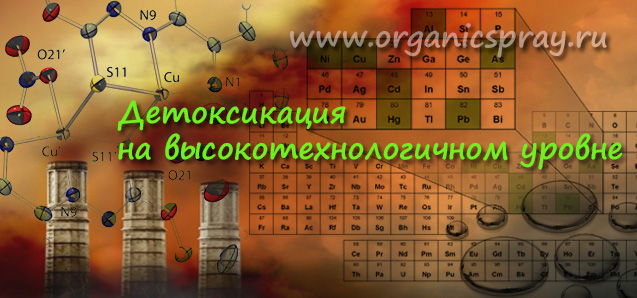 Детоксикация человеческого организма на высокотехнологичном уровне. Lavylites Solvyl
